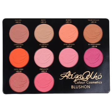 Atiqa Odho Color Cosmetics Blush On Kit - ABO1-10